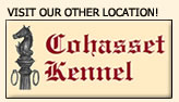 Visit our other location, Cohasset Kennel